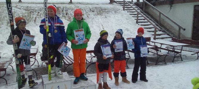 Zawody w narciarstwie alpejskim